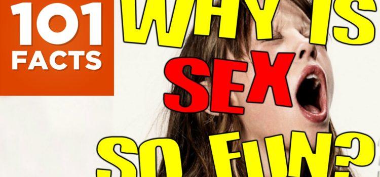 Warum macht Sex so viel Spaß