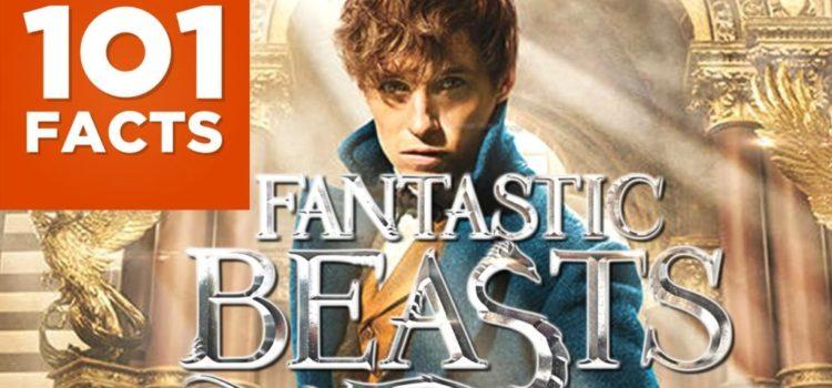 101 Fakten über Phantastische Tierwesen und wo sie zu finden sind (Harry Potter)